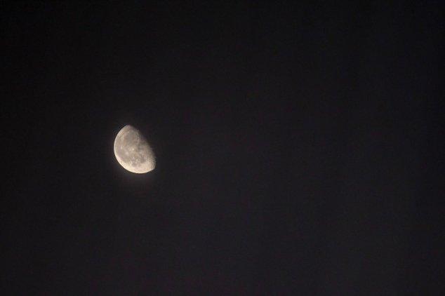 moonshot 08.13